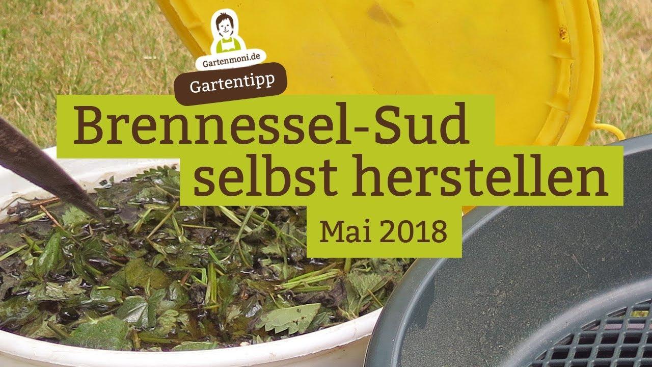 Bekannt Brennessel-Sud / Brennessel-Jauche als Pflanzendünger selbst LC64