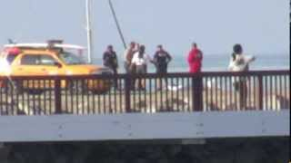 Exclusive: Man Found Dead on the Beach in Playa Vista, California.
