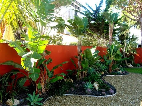 10 Beautiful Gardens With Tropical Plants Youtube