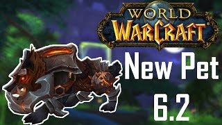 WoW   How to get a Iron Warwolf   Hunter Pet Guide