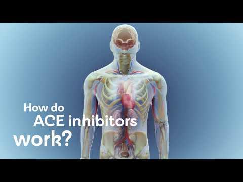How Do ACE Inhibitors Work?