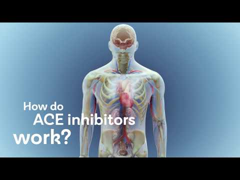 How do ACE inhibitors work?
