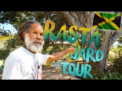 Jamaican Rastafari shows what he grows on his yard