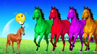 Learn Colors With Horse For Kids, Learn Animals For Children ❤ Wow Toddlers ❤ Name and Sound Animals