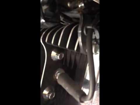 2005 Harley sportster 1200c engine knock