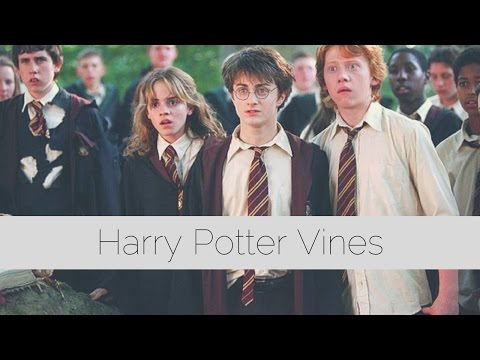 Harry Potter Vines