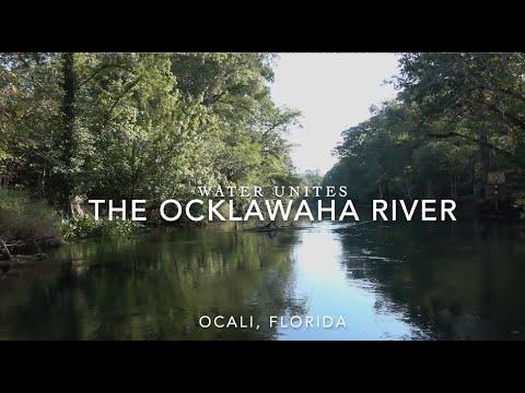 Ocklawaha River Journey