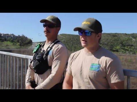 Animal Conservation in San Diego