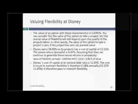 Session 23: Valuing flexibility and distressed equity as options