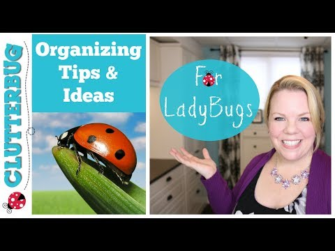 Organizing Tips and Ideas for LadyBugs - Clutterbug Organization Series