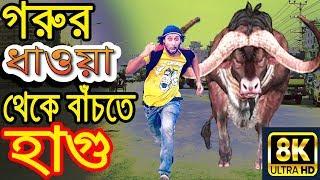 New Bangla Funny Video | Goru Dhaoa | New Video 2019 | Dr Lony Bangla Fun