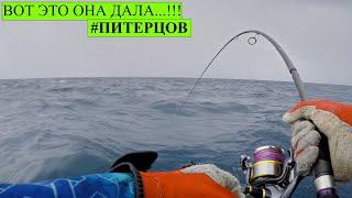Морская рыбалка на Сейшелах Ловля с берега и в открытом море