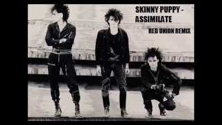 Skinny Puppy - Assimilate (Red Union Remix)