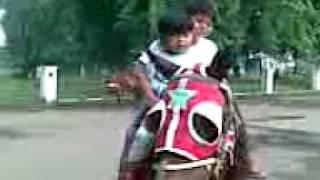 bokep gaya kuda