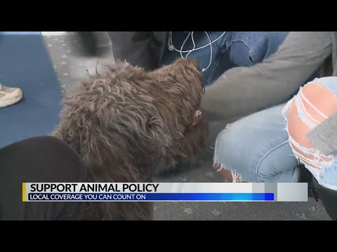 Support Animal Policy