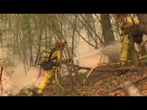 Dozens dead, thousands evacuated from California wildfires