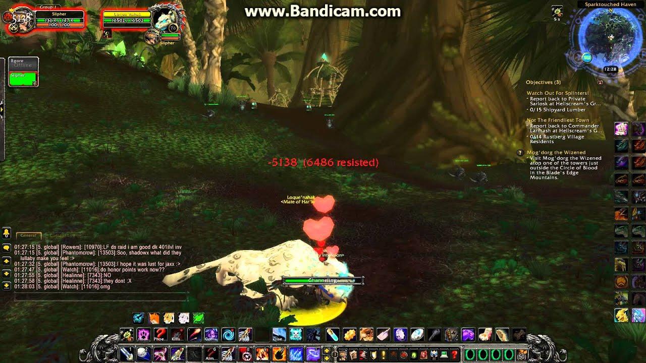 Cat Wow Hunter Pet