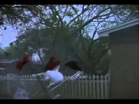 Tornado! Trailer 1996 - YouTube