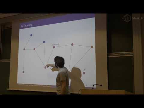 Estimating The Capacity Of The Ant Routing Algorithm For The Bitcoin Lightning Network