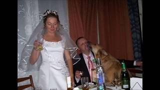 Прикольные фото с свадьбы. Как не надо фоткать