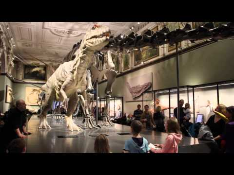 Jurassic Park in Natural History Museum Vienna