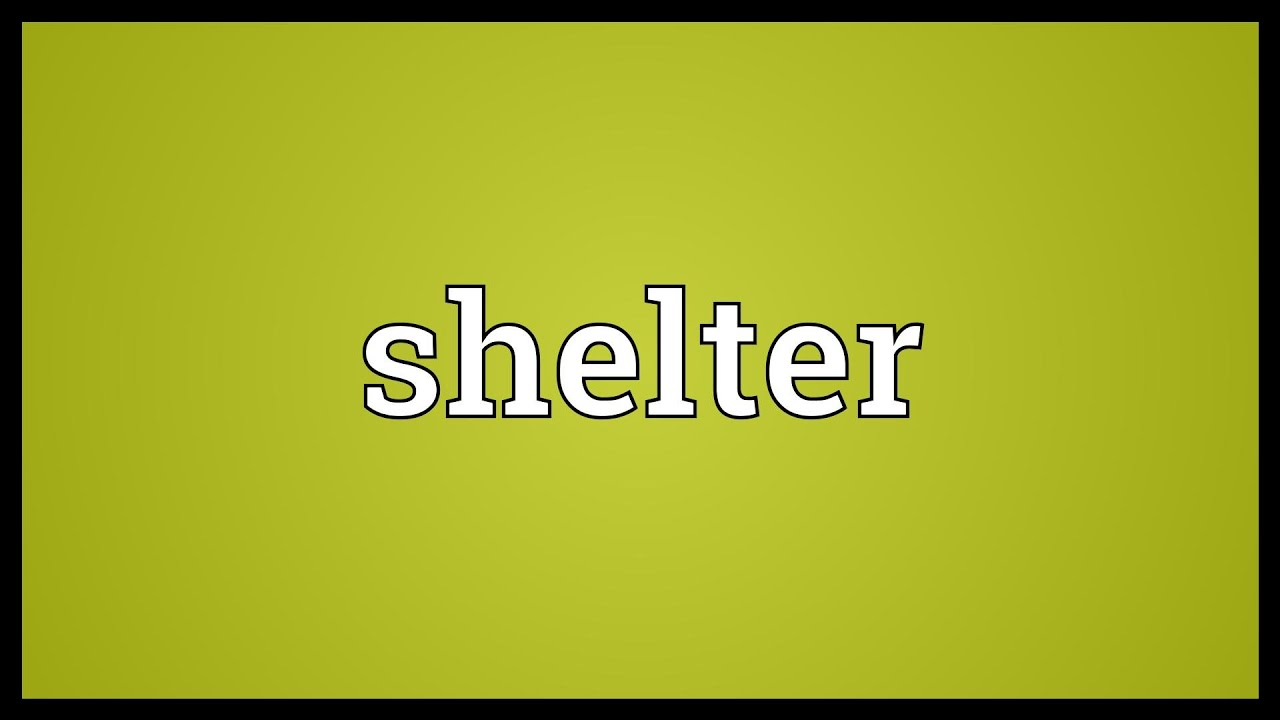 Shelter Meaning