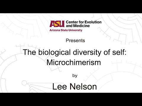 The biological diversity of self: Microchimerism | Lee Nelson