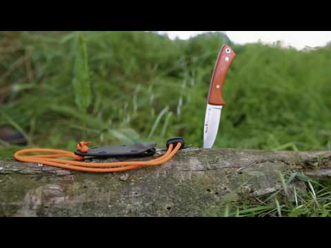 Cuchillo Muela Peccary