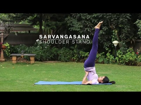 how to do sarvangasana  shoulder stand yoga pose  youtube
