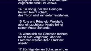 Sprüche 29 - über Spötter + Weise, Toren + Narren, Gottlose + Fromme + viele andere mehr.