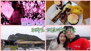 임신vlog l 제주 태교 여행 힐링 영상 2탄 (제주…