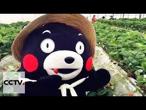 Being a mascot is a big business in Japan