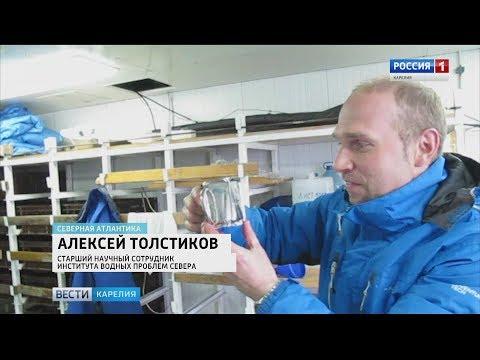 Видео Карелия сувенир петрозаводск