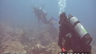 7/23/2005 Sherwood Forest Coral Reef Footage, Dry Tortugas National Park.
