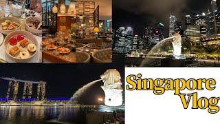 싱가포르 브이로그_해외…