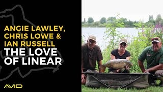 AVID CARP - The Love of Linear - Chris Lowe, Angie Lawley, Ian Russell