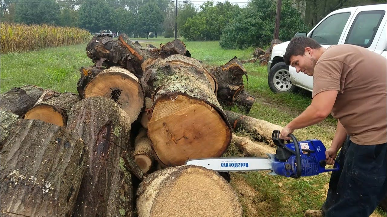 Holzfforma G660 chainsaw Test Cuts and First Impressions