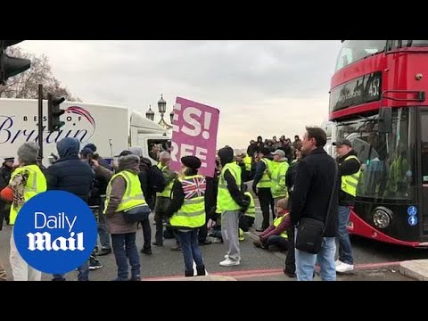 'Yellow Vest' protestors stop traffic on London's Westminster Bridge