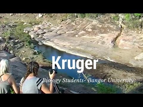 Kruger National Park - Biological Sciences Field Course