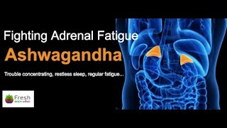 Fighting Adrenal Fatigue with Ashwagandha by Fresh Body Mind