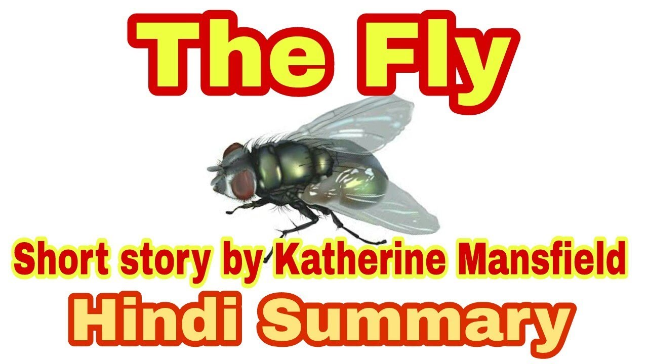 the fly mansfield analysis