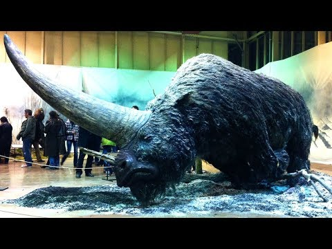 Extinct Species That Could Be Brought Back To Life!