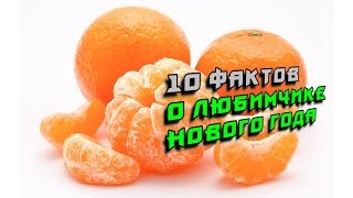 10 фактов о любимчике Нового года — мандарине!