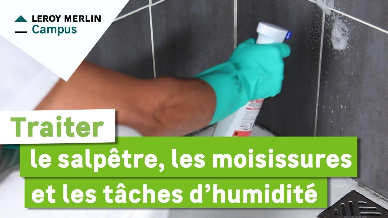 Comment Traiter Le Salpetre Les Moisissures Et Les Taches D Humidite Leroy Merlin Youtube