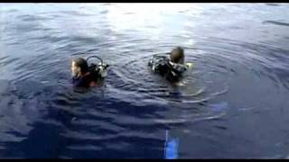 Открытое море / Open Water (2003)