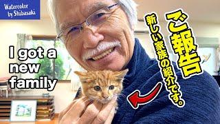 【ご報告】皆さんに嬉しいお知らせがあります。/ 新しい家族が増えました / 仔猫 /  保護猫