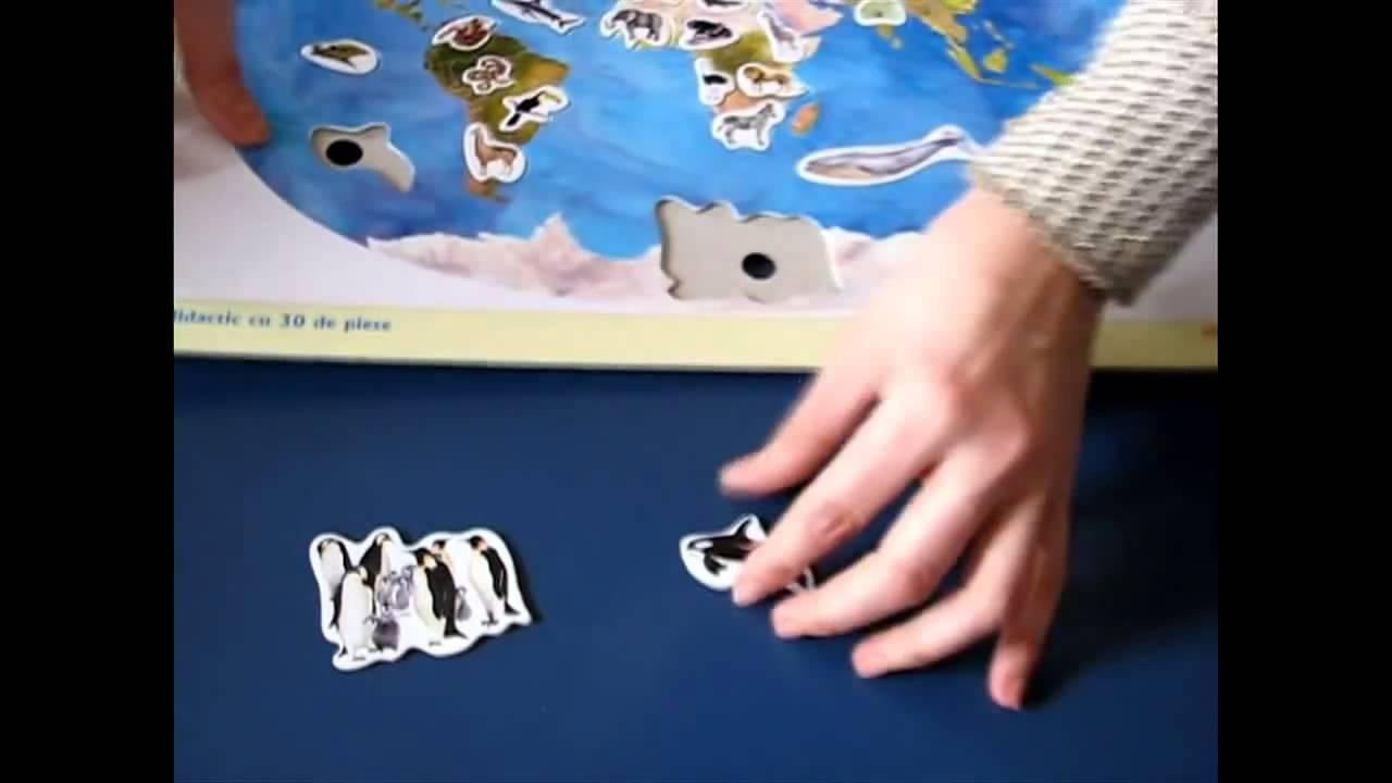Harta Lumii Cu Animale Joc Didactic Cu 30 De Piese Youtube