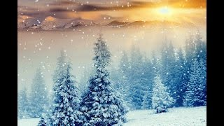 I'll Be Home For Christmas Sarah McLachlan Christmas 2017 Special Video