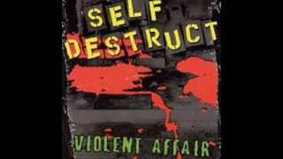 Watch Self Destruct Vicious Cycle video