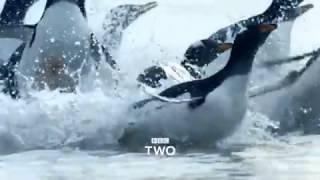 Atlantic: The Wildest Ocean on Earth is...